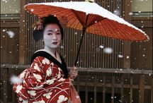 A Geisha's world