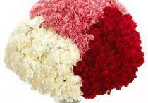 Vijayawada Online Florist / Send flowers to Vijayawada, Online flower delivery in Vijayawada, Cake delivery in Vijayawada, best florist in Vijayawada, same day flower delivery in Vijayawada. http://www.onlineflowersgift.com/