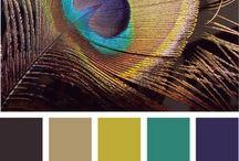:: Color Palettes :: / by KeunsupShin