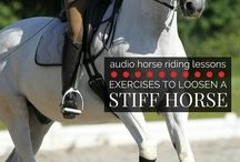 Audio Riding Lessons,  Horse and Rider