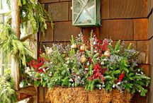 Holiday Decorating Likes / by Joyce H