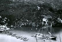 Remembering the HMS Buffalo