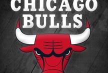 bull's