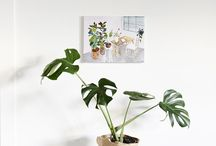 HOME Indoor plants