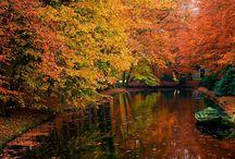 ~ Sweet Autumn ~