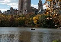 New York City / by Georgia Stanley