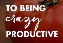 Productivity / Organization