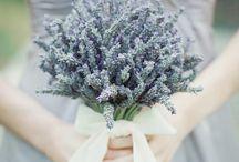 Lavender Bouquet / Lavender Bouquet