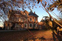 Domaine du Buc, Automne / couleurs d'automne