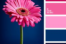 Color Palettes for Cards