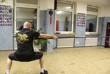 Wing Chun Langstock
