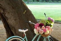 Repurposed Bikes <3