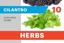 Antioxidant Food