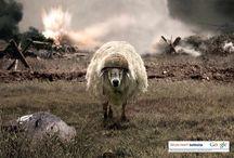 Print Ads / Werbeplakate
