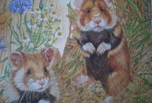 [postcrossing] Rodents cards i've RECEIVED / for postcrossing users