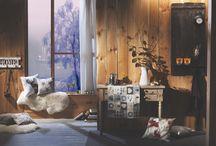"""Winterwonderland / Entdeckt unsere neue Themenwelt """"Winterwonderland"""" und lasst euch von dem winterlichen Flair verzaubern! Traumhafte Stern-Motive, sowie vorweihnachtliche Stimmung erwarten euch!"""