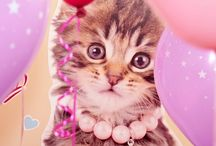 Glamour Cats Theme Party Ideas / Your birthday girl will go crazy over these adorable kitten party themes and ideas.