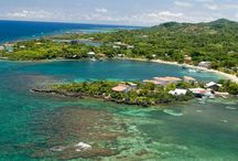 Scuba Diving and Snorkeling / Some great locations and information to scuba or snorkel.