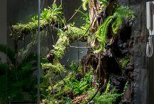 Terrarium og akvarium
