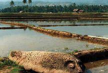 Indonesia Ancient