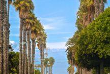 California ♥️♥️♥️