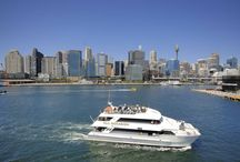 Quayside Fleet / Representing only the best of what Sydney Harbour has to offer!