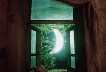 Look through you window and imagine...
