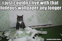 Hahaha! / by Mary Ambrose