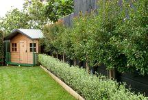 Miramar back garden