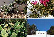 Living: Mediterran