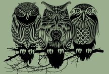 owls, because. / by Lesley Boileau