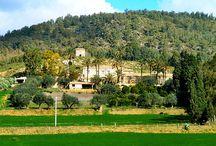 Vecchia Masseria / Discover our farm