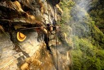 Honey Hunting Tour IN Nepal