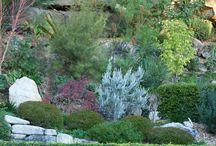 ASkarpy ogrodowe. Escarpment garden