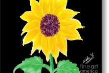 Gorgeous Sunflower!