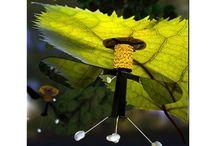 Pronti i RoboBee, i droni-insetto