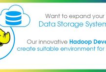 hadoop / EITS provides Hadoop consulting services to design, build, and deploy your massive database. We offer a complete blend of Hadoop platform services with latest features.