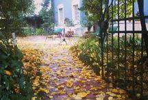 L'autunno alla Locanda L'Elisa / <<L'Autunno è una stagione stupenda, piena di colori vivaci, come il rosso, il colore dell'amore, o l'arancione, il colore dell'esperienza, o ancora il giallo, il colore dello splendore, e per ultimo il bianco nebbia, il colore della pace.  Insomma questi colori riportano già quasi tutte le caratteristiche dell'autunno, una stagione calma e silenziosa, ma allo stesso tempo vivace.>>
