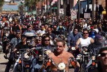 Daytona Bike Week / No se pierda de presenciar el evento de motos más grande del mundo y disfrutar al máximo de este increíble destino.