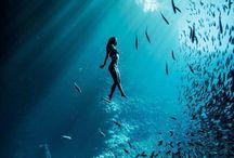 unterwasserfotos