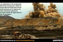 #SalvaSanGuillermo / El hogar del puma está en peligro. La Reserva San Guillermo en San Juan, último paraíso salvaje no boscoso de América del Sur y hábitat de numerosas especies de aves y animales como el puma y la vicuña, está amenazada por un mega proyecto de la minera Barrick Gold que, para extraer oro, pone en grave riesgo este ecosistema único.  Pedile ahora al gobernador de San Juan, José Luis Gioja que prohiba toda actividad minera en la Reserva San Guillermo http://grpce.org/16oHphx