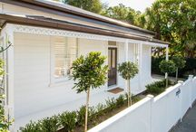 kiwi homes cute as