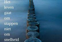 Spreuken & Gedichten & Citaten