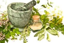Naturopathic Doctor = ND / http://www.facebook.com/NWNDPhysician / by Holly Berry