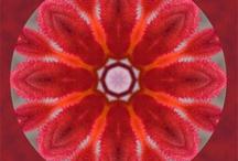 Mandalas / Beautiful, colorful mandalas