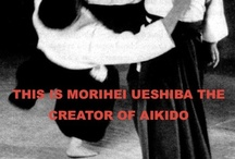 Aikido,tae kwon do,kendo,jiu jit su / by Deysa Jean Torres