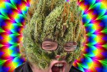 weeder / #weed