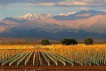 Argentina-Mendoza