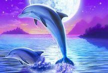 Hermoso delfín