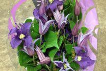 Flower Varieties {Purple Flowers} / Looking for purple flowers for your wedding?  visit the Flowermonger!